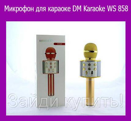 Микрофон для караоке DM Karaoke WS 858!Акция