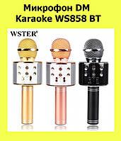 Микрофон DM Karaoke WS858 BT