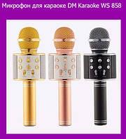 Микрофон для караоке DM Karaoke WS 858