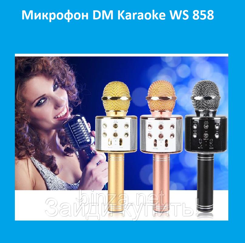 Микрофон DM Karaoke WS 858