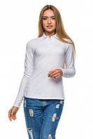 Женская футболка Поло 2850 длин.рукав - белая: S M L XL 2XL