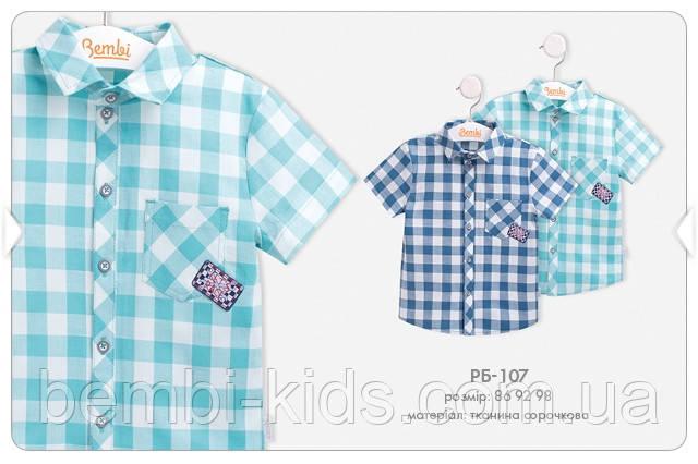 Літня сорочка для хлопчика РБ107