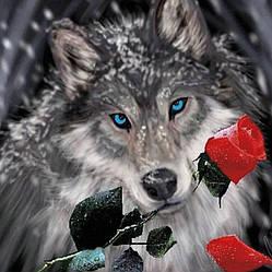 """Алмазная вышивка 40х40см - набор """"Волк с алой розой"""""""