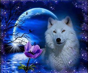 """Алмазная вышивка 40х30см - набор """"Белая волчица"""""""