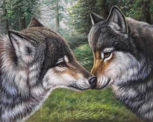 """Алмазная вышивка  50х40см - набор """"Влюбленные волки"""""""