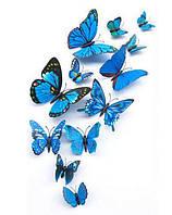 Объемные 3D бабочки для декора синие, фото 1