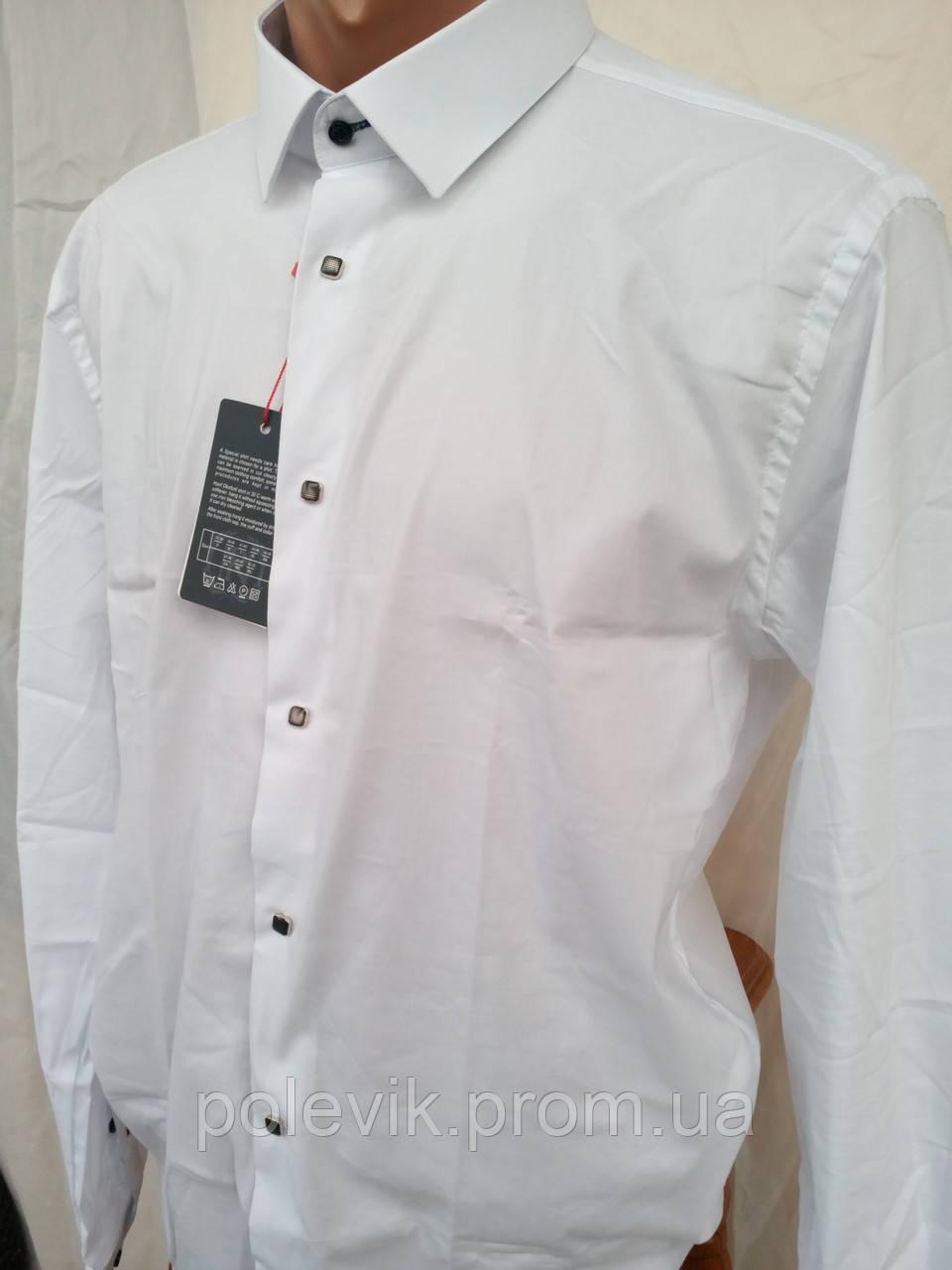 1cbdff1d396 Белая Хлопковая Рубашка Nino Pacoli Premium — в Категории
