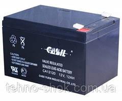 Аккумуляторная батарея Casil CA12120  12V,12Ah