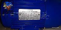 Электродвигатель АИР80В6 1,1 кВт 1000 об/мин (1,1/1000) 2081 В35
