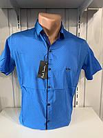 Рубашка мужская Paul Smith короткий рукав, стрейч, заклепки. №30.03 9 005  \ купить рубашку