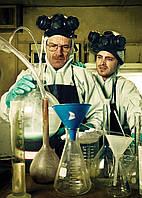 Картина GeekLand Breaking Bad Во все тяжкие химики 40х60см BB 09.002