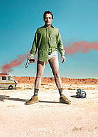 Картина GeekLand Breaking Bad Во все тяжкие уолтер без штанов 40х60см BB 09.004
