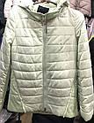 Демисезонная Фабричная куртка. Утеплитель тинсулейт, фото 9
