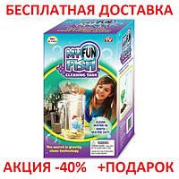 """Аквариум самоочищающийся """"My Fun Fish"""" для рыб, мини аквариум, маленький аквариум Original size"""