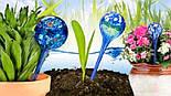 Шары для Полива Растений Аква Глоб Aqua Globe, фото 3