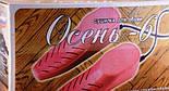 Сушилка Электрическая для Обуви Осень 6, фото 3