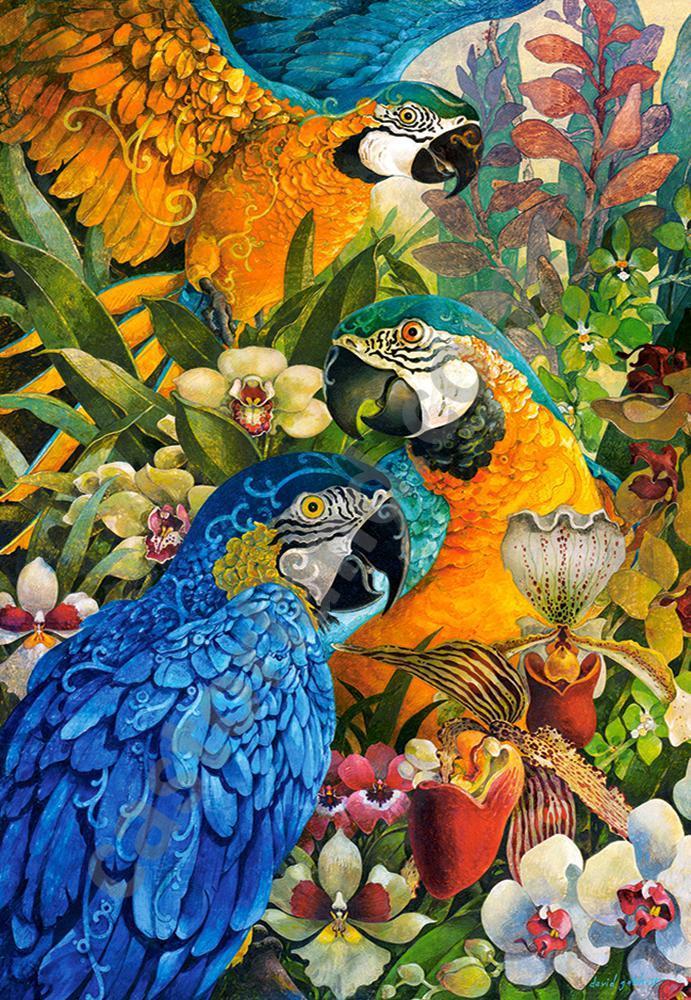 Пазлы Попугаи 1000 элементов