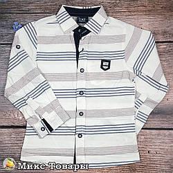 """Сорочка """"Трансформер"""" довгий і короткий рукав для хлопчика Розмір: 9,10,11,12 років (8360)"""