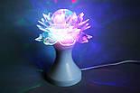 Световой Диско Шар Цветок LED Ball Light, фото 4