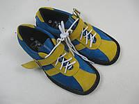 Штангетки желто-синие