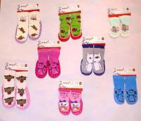 Чешки носок для мальчиков размер 16-25 (от 6 шт), фото 1