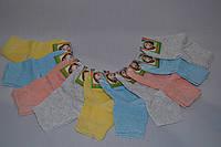 Носки детские размер 12-18  (от 10 шт)