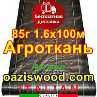 Агротканина 1,60 * 100м 85г / м.кв. Чорна, плетена, щільна. мульчування грунту, фото 1