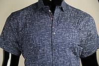 Рубашка мужская ANG 44850/44855 норма и батал