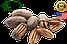 Пекан в скорлупе  (США) Вес: 250 гр, фото 2
