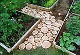 Садовая дорожка деревянная в украинском стиле с доставкой по всей Украине, фото 6
