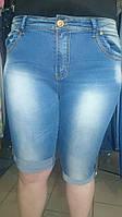 Бриджи джинсовые батал