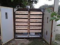 Виводной шкаф для яиц от 100-3500 яиц