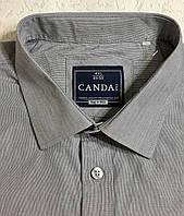 Рубашка хлопковая CANDA.(4XL\ 50), фото 1