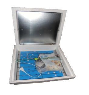 Инкубатор Курочка Ряба автоматический 42ЦифровойЛитой пенопластовый корпус,тип нагрева  лампы