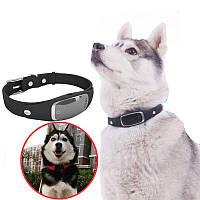 GPS ошейник для собак - трекер Pet Tracker S1, водонепроницаемый черный