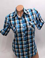 Рубашка клетка короткий рукав