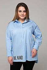 Голубая стильная рубашка для полных женщин Зара, фото 3