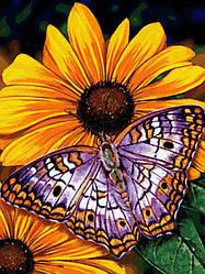 """Алмазная вышивка 40х30см - набор """"Бабочка на цветах"""""""