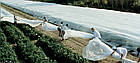 Агроволокно на метраж 19 белый 6,35 м, фото 4