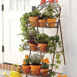 Подставки и опоры для растений