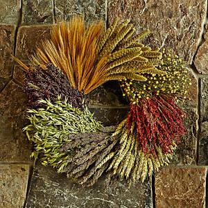 Сушеные цветы, растения