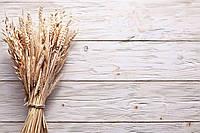 Фотофон виниловый, пшеница 310519