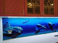 Кухонная скиналь - дельфины