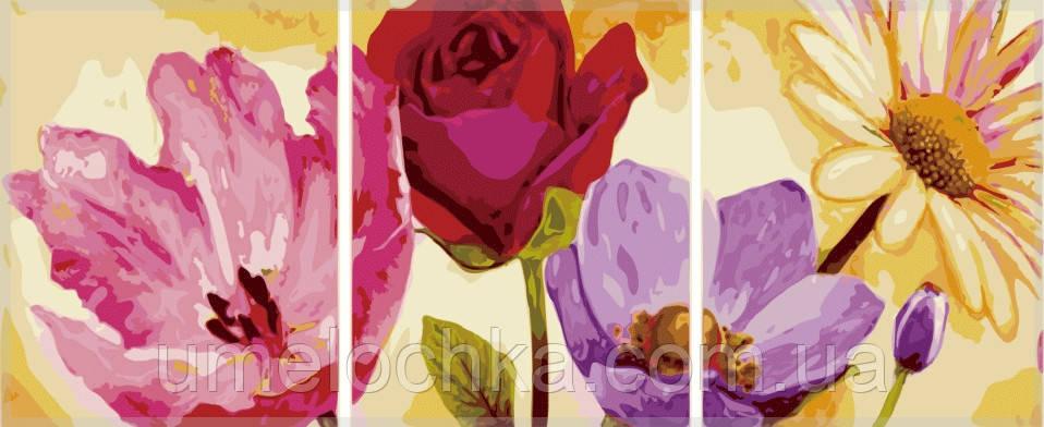 Картина раскраска триптих цветы Babylon Летние цветы