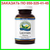 Лецитин НСП. Витамины и минералы для спортсменов