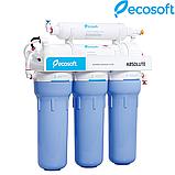 Фильтр обратного осмоса Ecosoft Absolute 5-50 (MO550ECO), фото 7