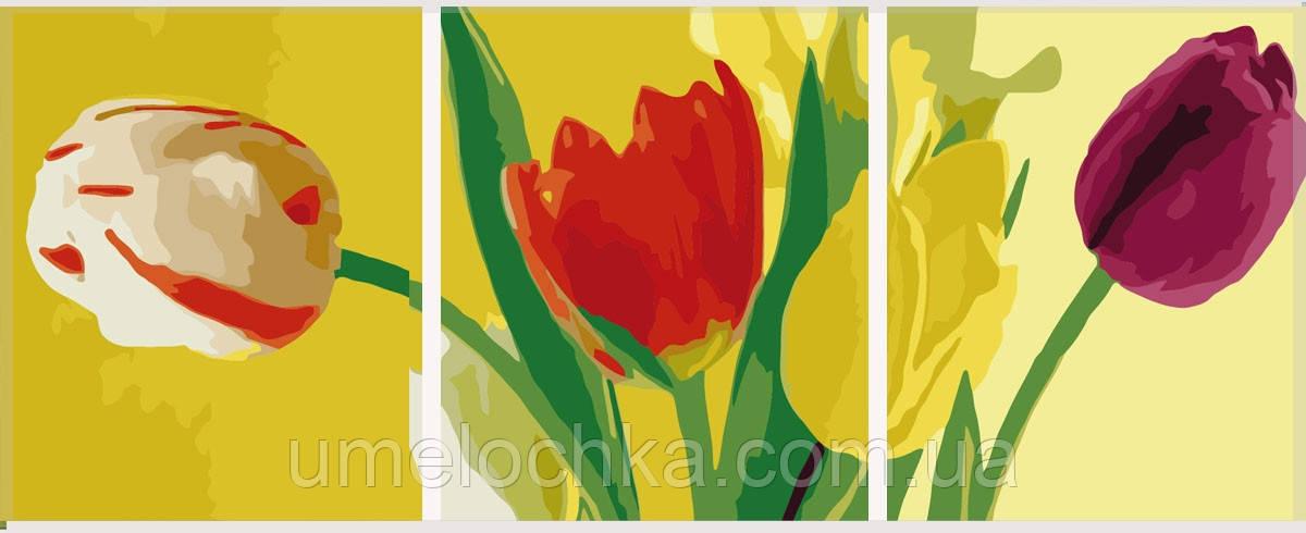Картины раскраски триптихи по номерам Babylon Разноцветные тюльпаны