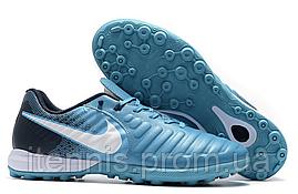 Сороконожки Nike TiempoX Finale TF (р. 40-45) C238