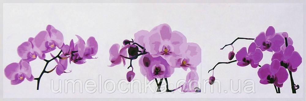 Картина раскраска триптих цветы Babylon Ветка орхидеи