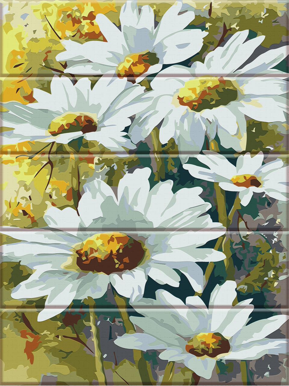 Картина по номерам Ромашки, 30x40 см., Art Story
